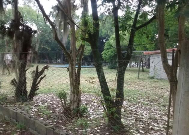 OPORTUNIDAD!  VENTA 8 LOTES EN ZAVALLA UNA CUADRA DE LA RUTA  AL LADO DEL CLUB ITALIANO FACULTAD DE AGRONOMIA